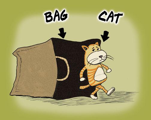 catbag.jpg